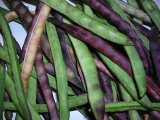 how to grow crowder peas