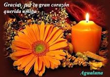 Gracias  Gata Coqueta