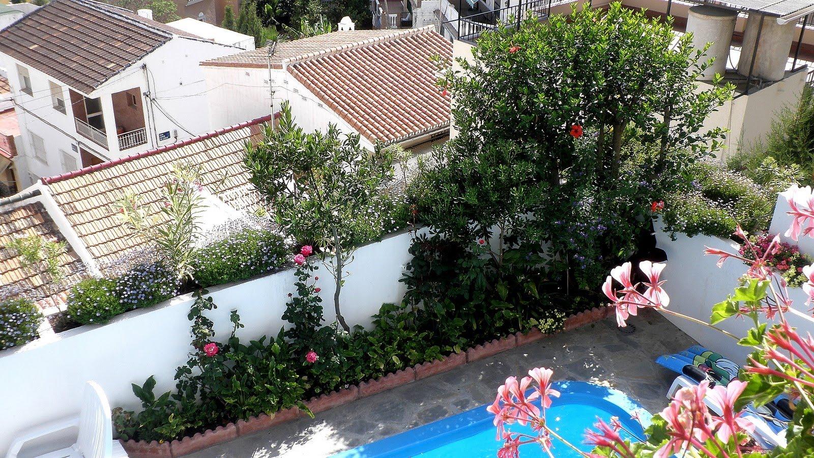 Jardinbio jardin arriates y maceteros 100 biodinamico - Plantas para arriates ...