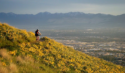 Image of mountain biker on trail near Salt Lake City