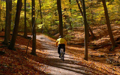 Image of fall bicyclist
