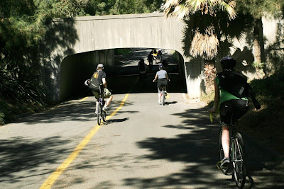 Image of bicycle path in Davis, California