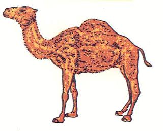 mensajes subliminales... Camel3