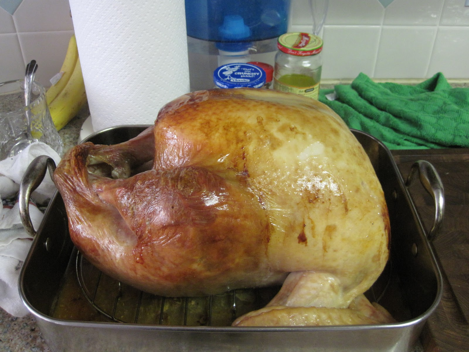 Recipe Review - Alton Brown's (From Good Eats) Roast Turkey ~ Create. Share. Repeat!