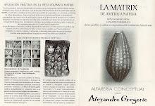 """COLECCIÓN CONCEPTUAL """"LA MATRIX DE AMÉRICA NATIVA"""""""