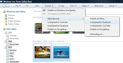 Windows and android free downloads: windows live photo, windows.