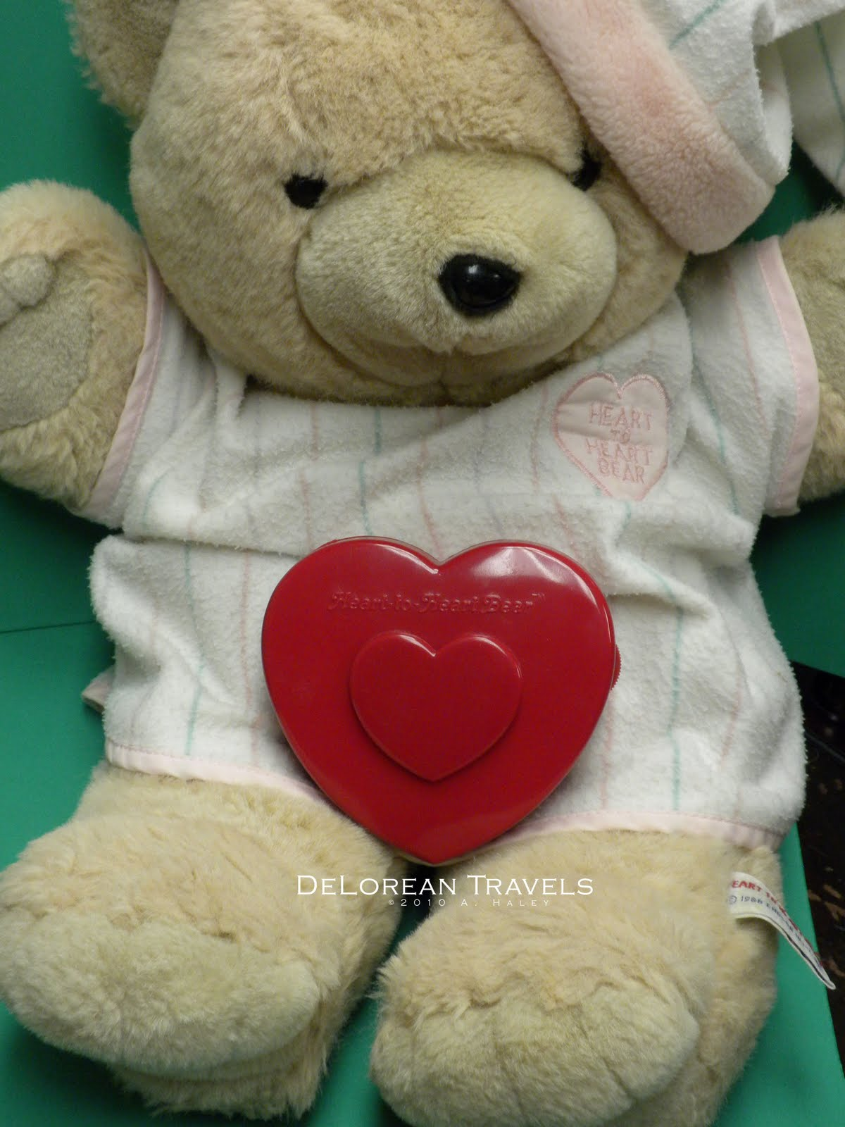 Delorean Travels Heart To Heart Bear