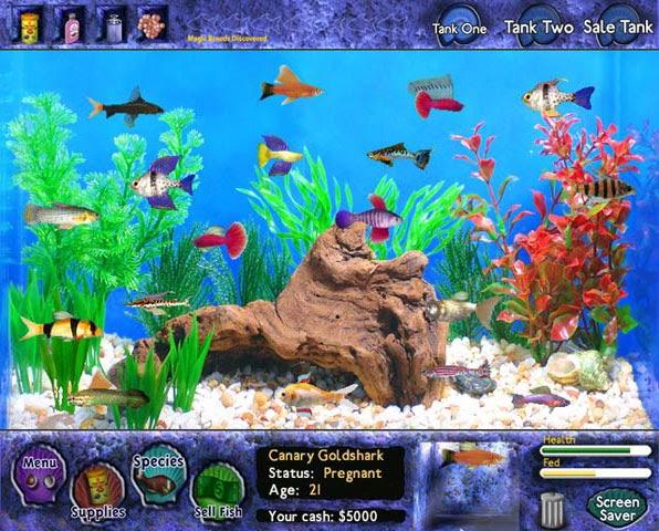 Freyashawk 39 s game reviews 39 fish tycoon 39 a virtual aquarium for Fish tank game