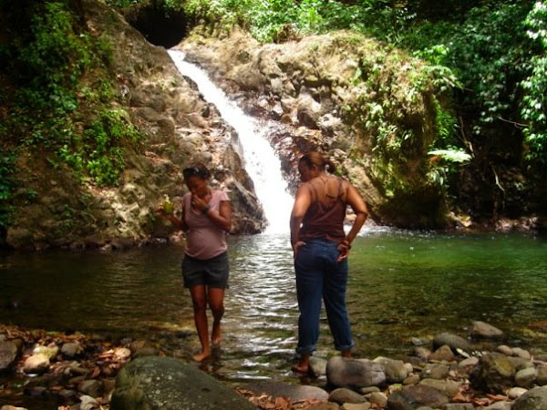Frank's St.Lucia & Taxi Tours