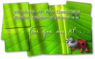 windows xp coccinelle mtamorphose 3.5