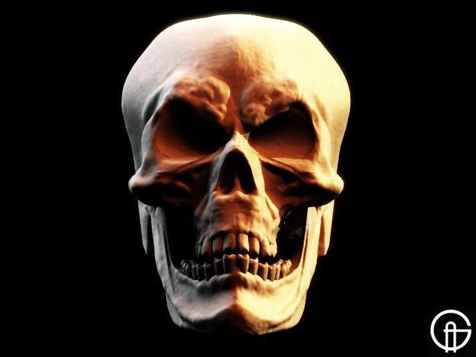 [skull2b.jpg]