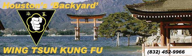 Houston's 'Backyard' Wing Tsun Kung Fu