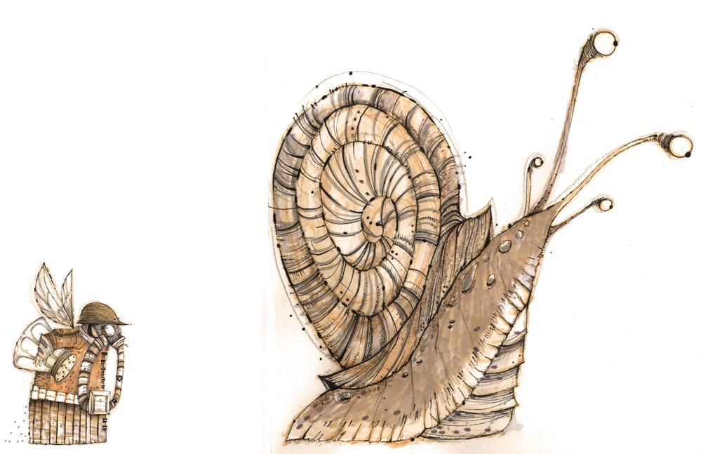 [snail01.jpg]