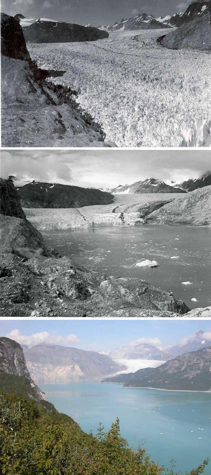 Bill-Alaska Geoscience: Terrestrial Ice: Glaciers