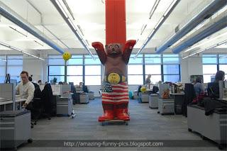 Amazing Funny Pics Google Offices Around The World  New York US