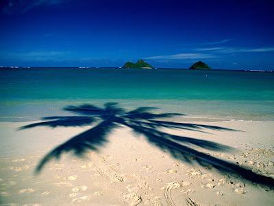 Sahil kumsal resimleri