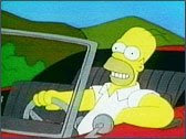 Homer Simpson driving
