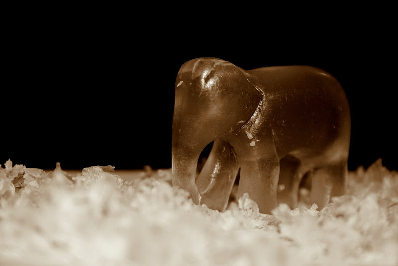 Netra Photo Gallery: Soap carving of a baby elephant