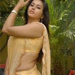 Namitha Hot Saree Photo