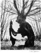 Vilem Reichmann: Pan's Labyrinth