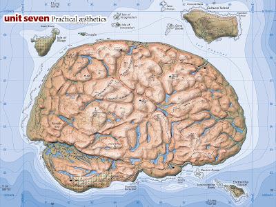The Brain Is An Island After All The Brandbuilder Blog