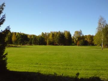 Image:Autumn 2