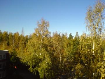Image:Autumn 4