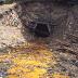 El descubrimiento del carbón
