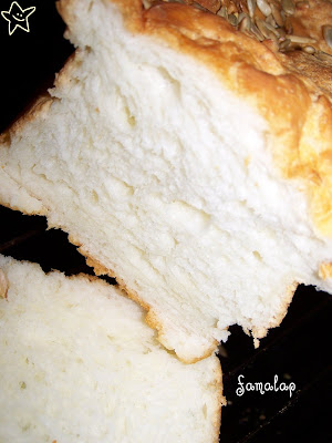 Pan+de+molde+th,+SIN+sustittuto+gluten+(2)I