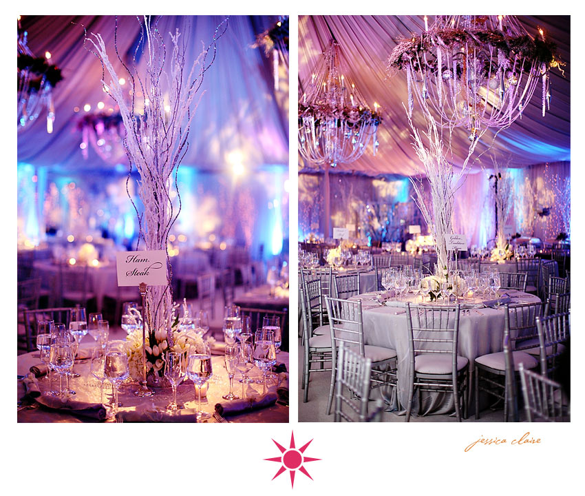 Wedding Ideas For Winter On A Budget: Winter Branches Wedding Centerpieces Ideas