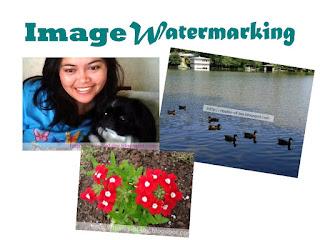 Image Watermarking