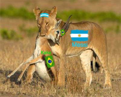 Argentina Vs Brazil World Cup  Must See I Wish To See Argentina Vs Brazil In World Cup  Final And I Have Imagined The Match Will Be Like In The