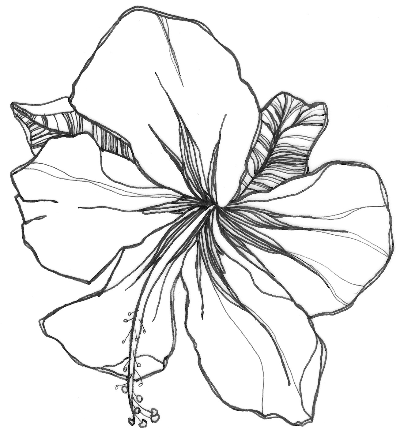 Flower Drawings Simple: Nicole Illustration: Flower Power