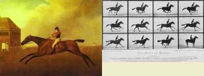George Stubbs - Baronet with Samuel Chifney (1791) and Eadweard Muybridge - Galloping Race Horse (1878)