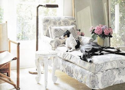 Brillante Interiors: How to have dogs and a nice house too