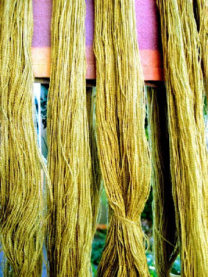 Dyed silk weft, drying