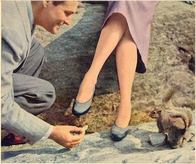 1950 S Fashion Fully Fashioned Stockings Glamour Daze
