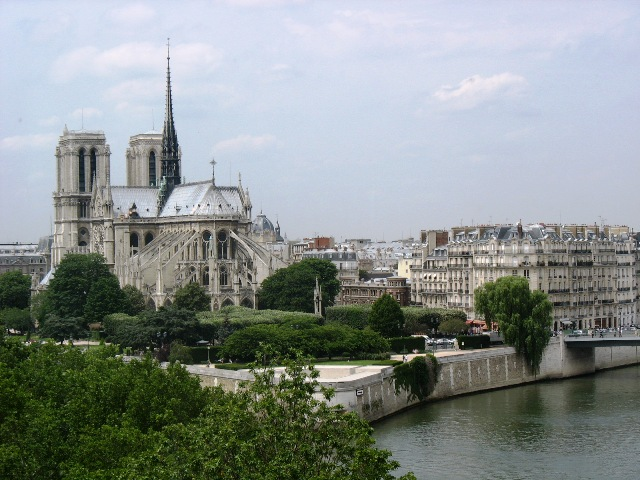 [157_view+of+notre+dame+from+la+tour+d]