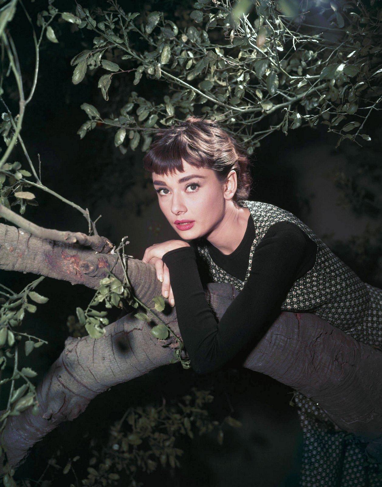 [Annex+-+Hepburn,+Audrey+(Sabrina)_12.jpg]