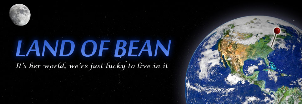 Land of Bean