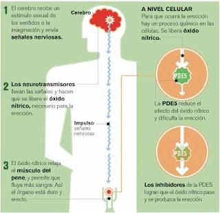 Efectos secundarios de la viagra en el hombre