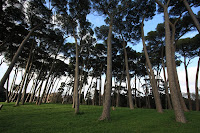 Doria Pamphili Park in Rome