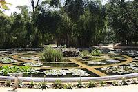 Botanical Garden - Aquarium - Palermo, Sicily