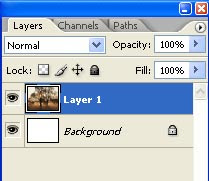Gambar posisi palet layer