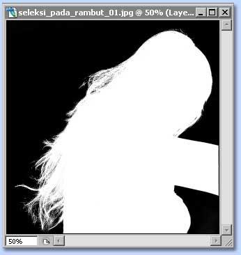 tutorial photoshop untuk membuat seleksi dengan channel dan layer mask, gambar 5