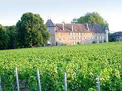 Les vins du Château d'Allaman