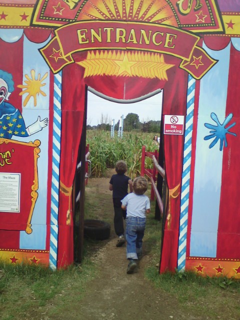 Review: Millets Farm's Maize Maze, Oxfordshire