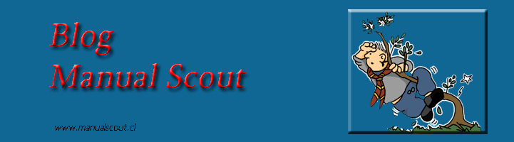 BLOG  MANUAL SCOUT