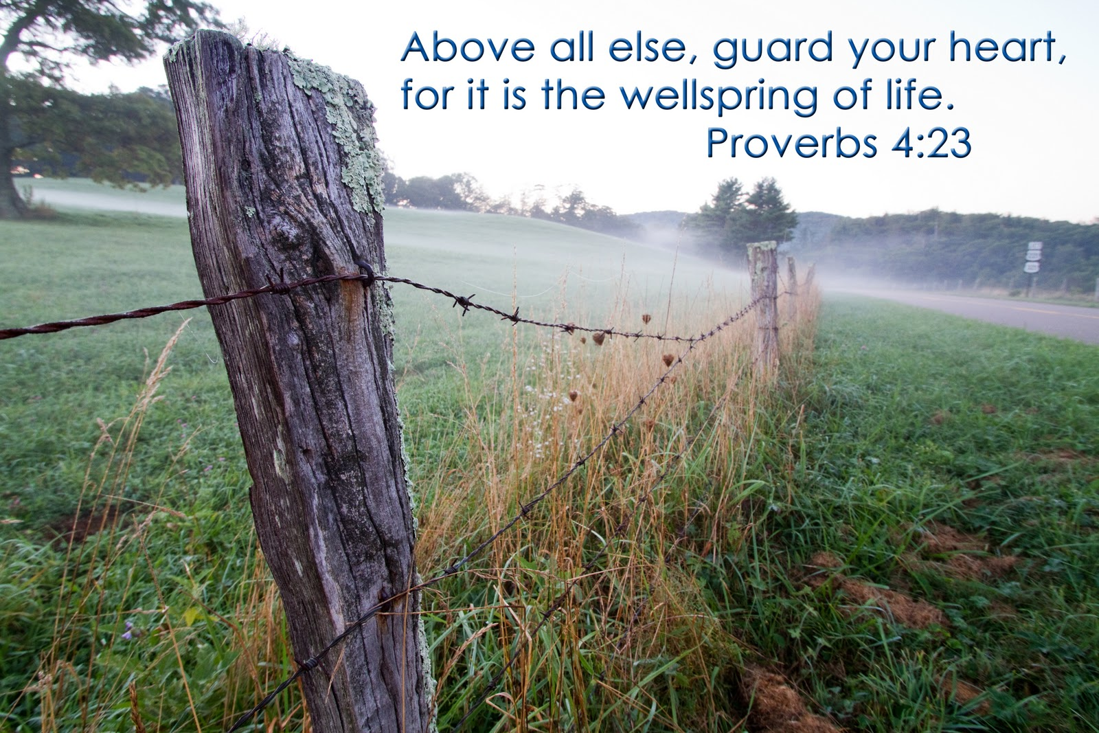 Proverbs 4 23 King James – Quotes of the Day
