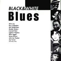 Black & White Blues (2008)